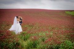 focení-jetel-svatba