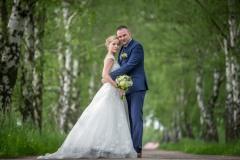 svatební-foto-v-březové-aleji